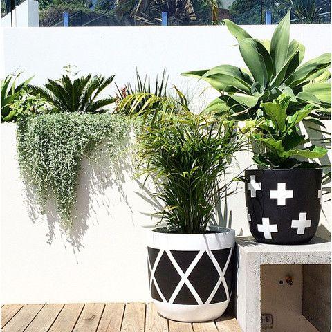 design-twins-black-and-white-pots-plants