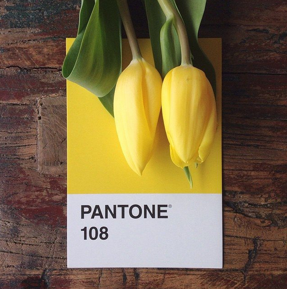 pantone-style-yellow