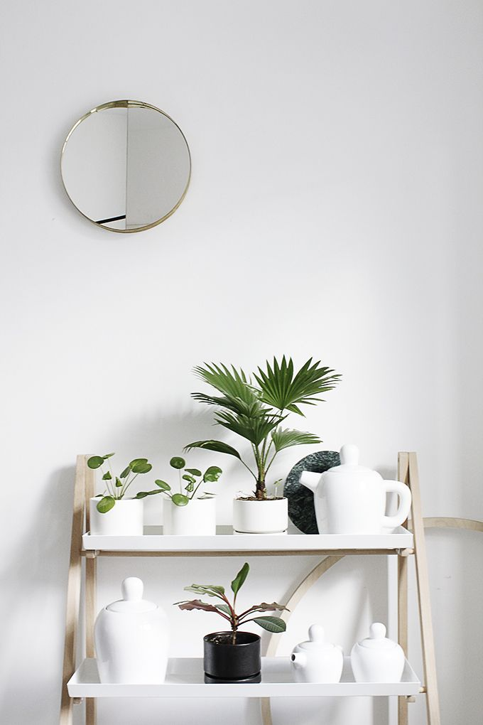 7-signs-your-obsessed-with-interior-design-white-plants-shelf