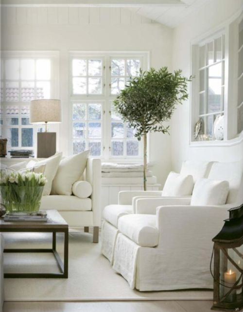 hamptons-inspired-interior-design-decor-plants