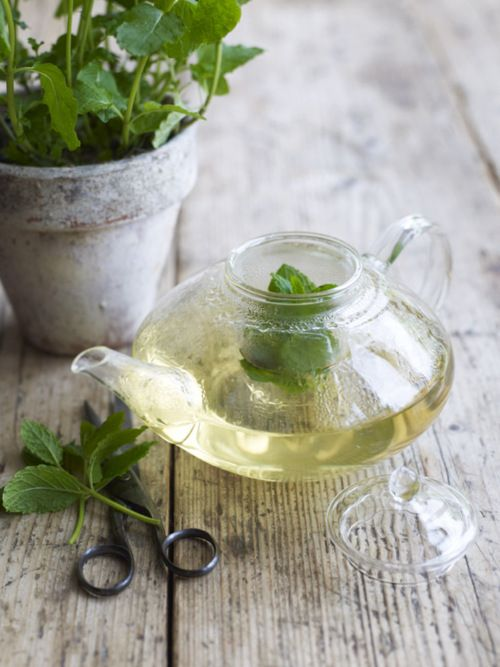 the-benefits-of-drinking-tea-lemon-mint