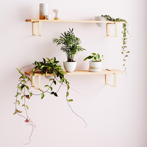 ivy-muse-plant-shelf-wood