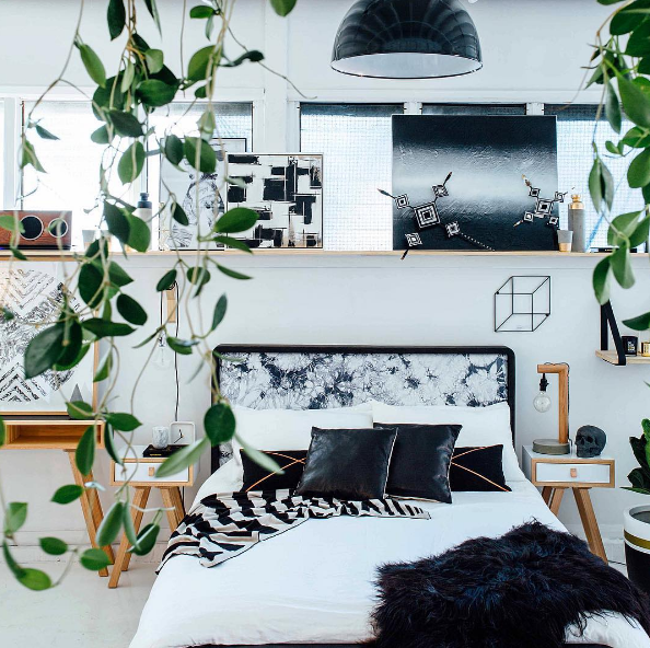 styling-indoor-plants-greenery-design
