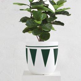 Cleo Pot